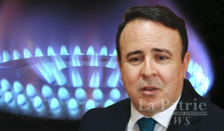 Wilaya déléguée Ouled Djellal: 1355 foyers raccordés au gaz de ville